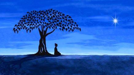 Buda buscando su esencia