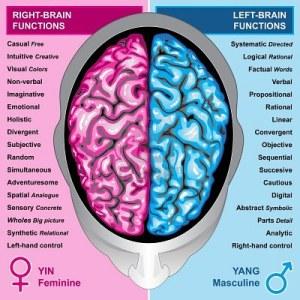 Funciones por hemisferios