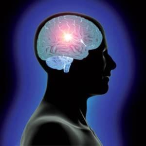 El misterio cuántico en nuestro cerebro
